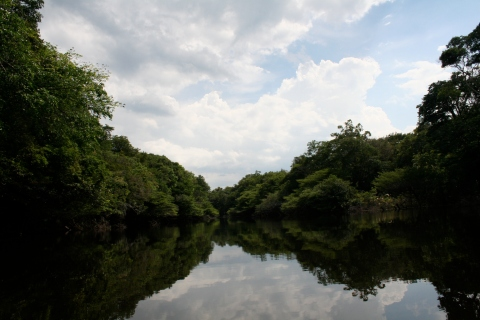 Xixuaú river