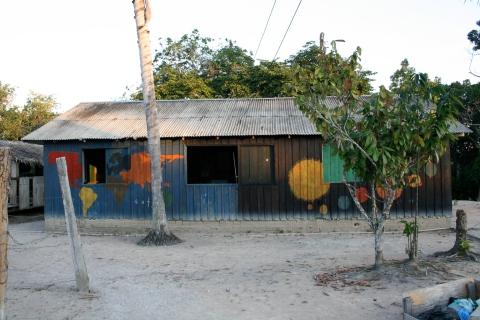 The school of Xixuaú