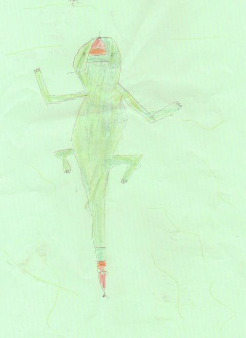Amelia Groom - Y2 - Lizard