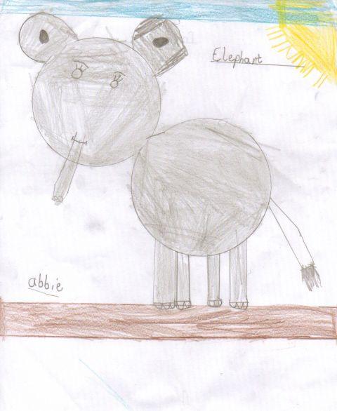 Abbie - Y3 - Elephant