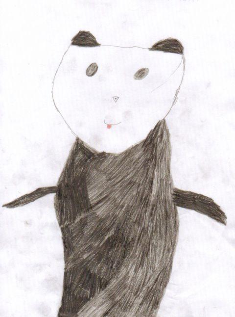 Alex Forrester Sherlock - Y3 - Panda