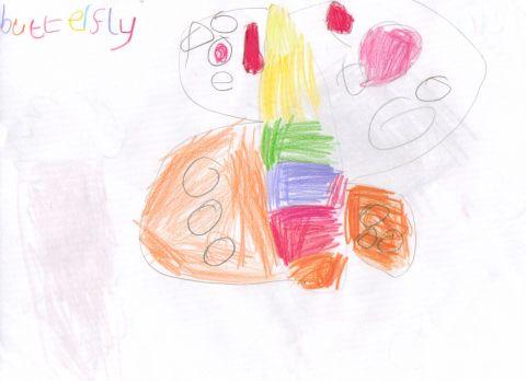 Amelia - Y1 - butterfly
