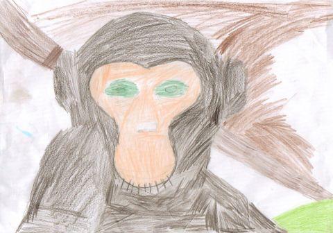 Bethan - Y4 - monkey