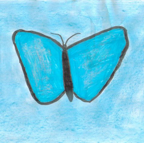Cindy W - Y5 - Butterfly