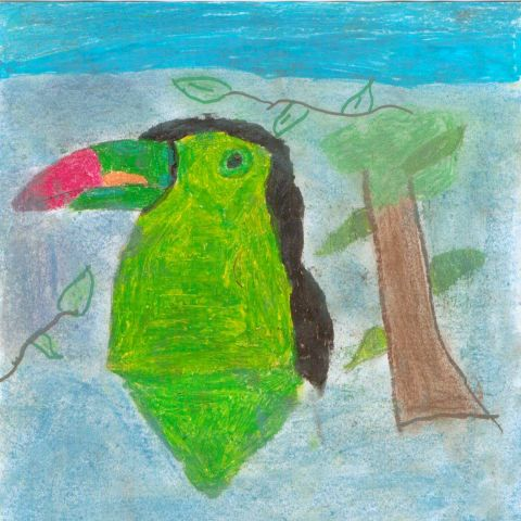 Daisy Churchill - Y5 - Toucan