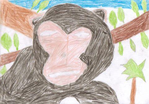 Daniel - Y6 - monkey