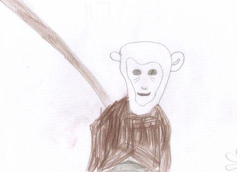 E.H. - Y4 - monkey