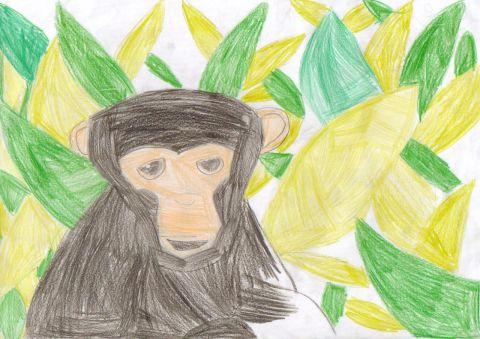 Elise Peers - Y4 - Monkey