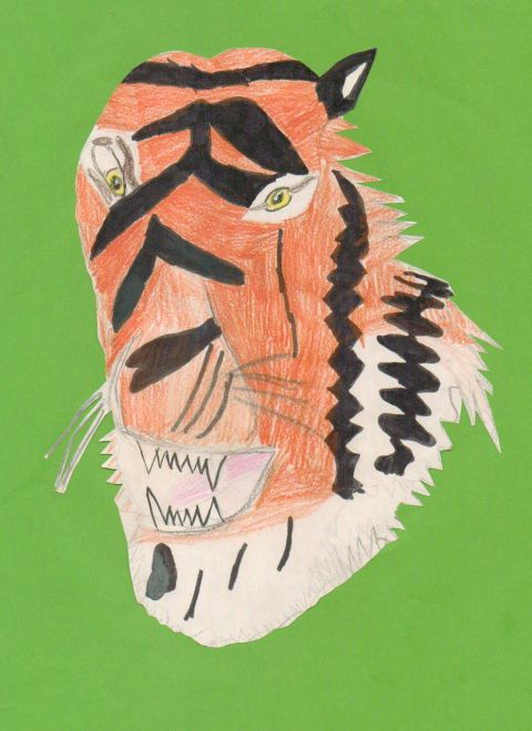 Ellie Groom - Y5 - Tiger