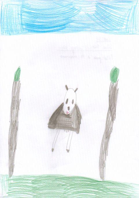 Ethan H - Y3 - panda