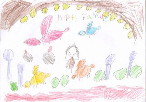 Faye Meivillre - Y1 - parrots