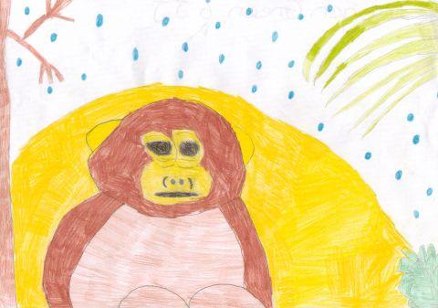 Imogen G - Y6 - monkey