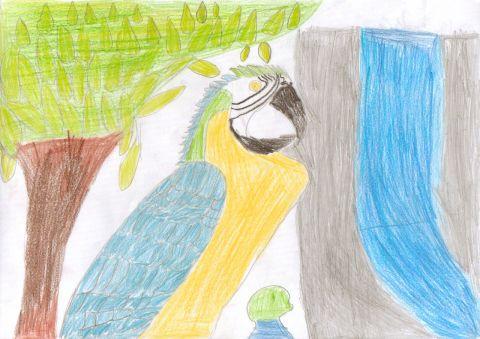 J Brooks - Y6 - Parrot