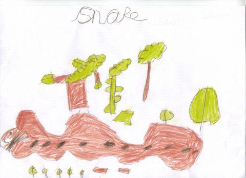 Jake Staken - Y1 - snake