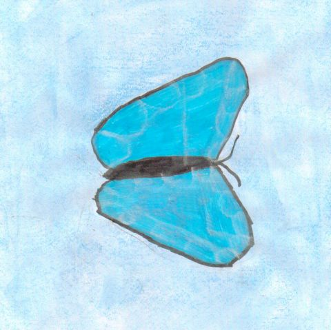 Jasmine P - Y5 - Butterfly