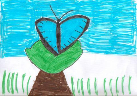 Jayda - Y5 - butterfly