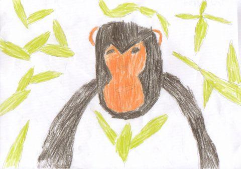 Josh D - Y6 - monkey