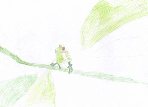 Katie Armitage - Y4 - frog