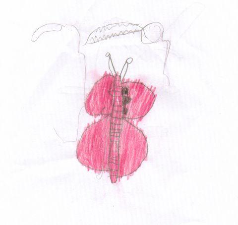 Liam Shaw - Y3 - butterfly