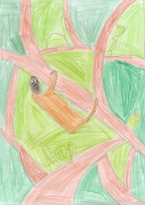 Lucy Evans - Y4 - Sloth