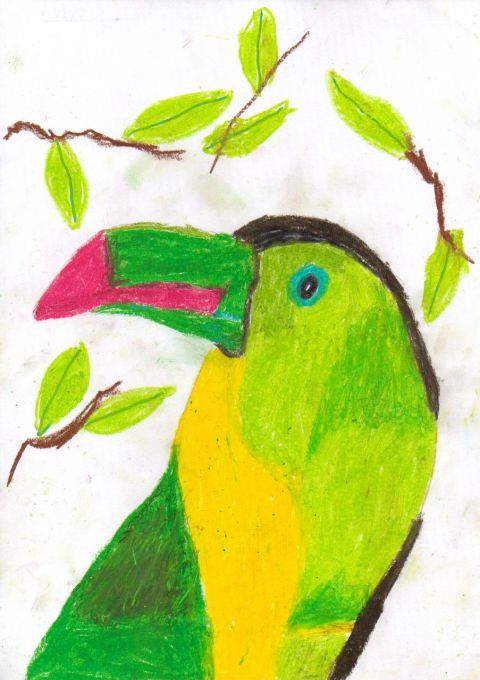 Lucy Steele - Y5 - Toucan
