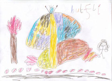 mai7sna - Y1 - butterfly