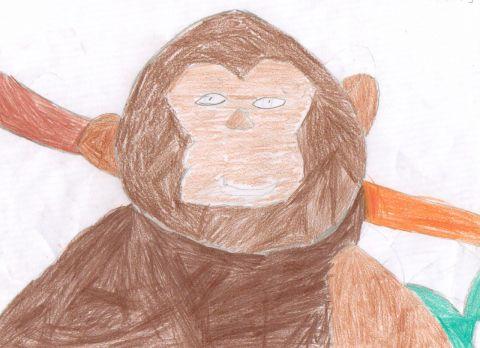 Nathan J - Y6 - monkey