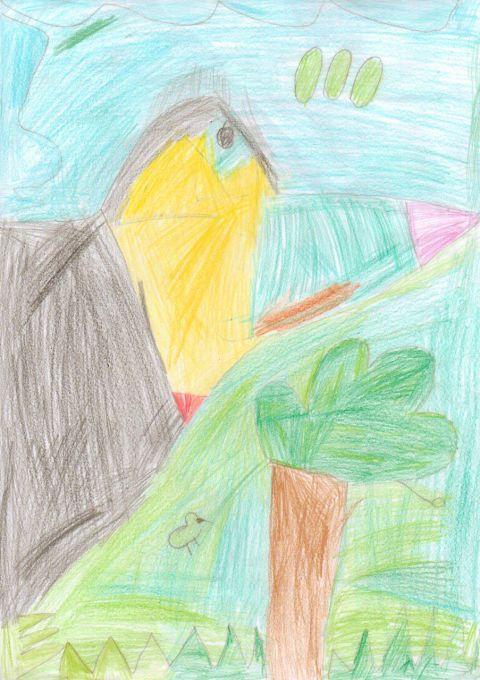 Paisley - Y4 - Toucan