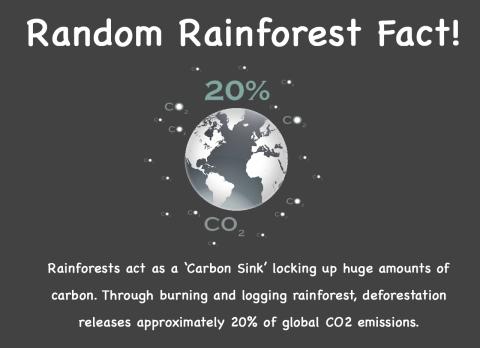Random fact 3