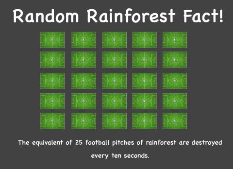 Random Fact 5