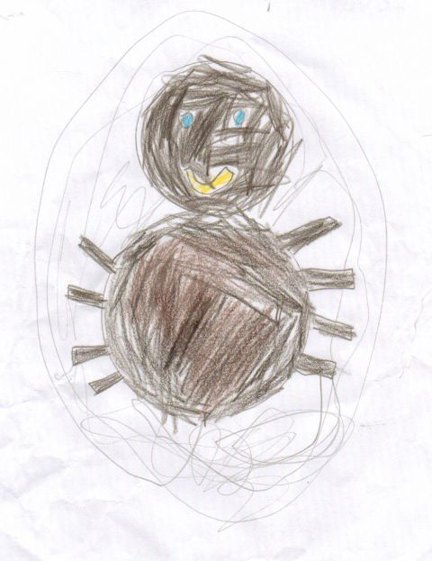reuben - Y3 - Spider
