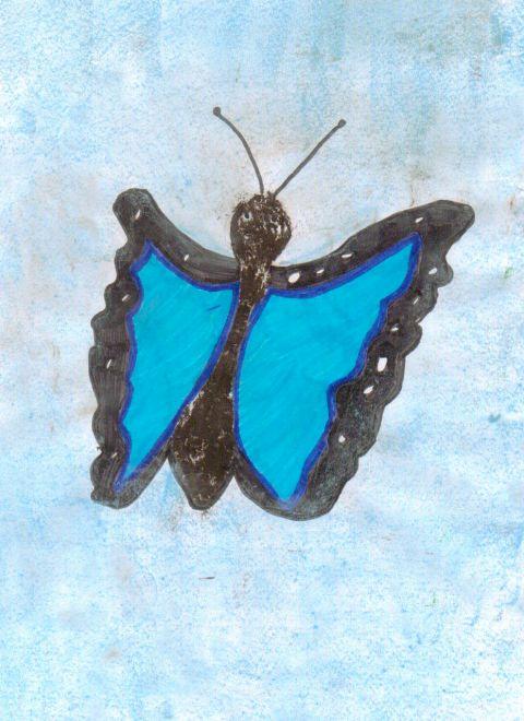 Sadie Davies - Y5 - butterfly
