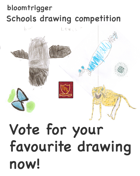 Schools drawing competition