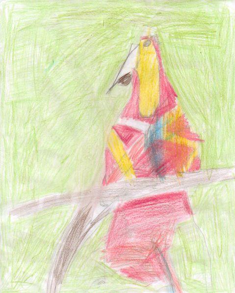 Scott Hanton - Y4 - Parrot