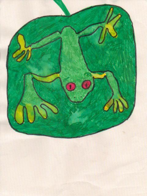 Todd Watkins - Y5 - Frog