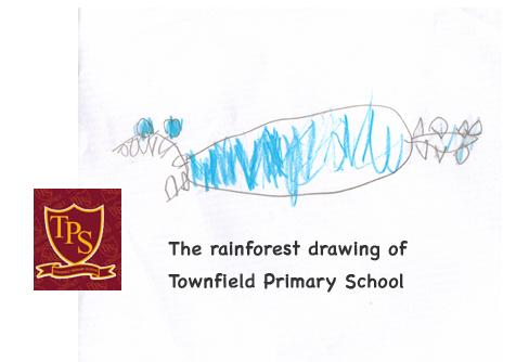 TPS drawings...