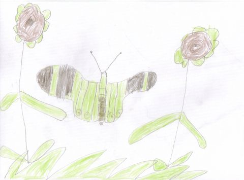 Unknown 3 - Y3 - butterfly