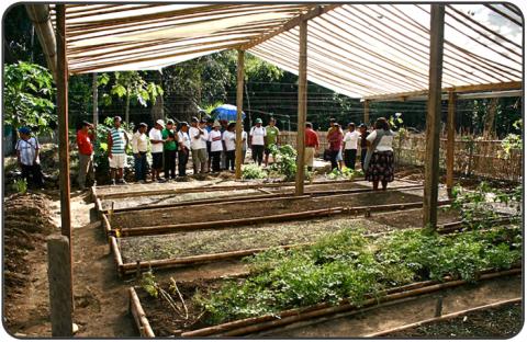 The MLC bio-garden