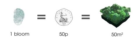 1 bloom = 50p = 50m2