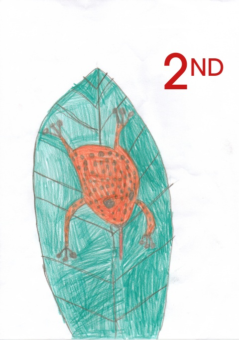 Nuno - Year 3 - Mrs Smiley - Salusbury