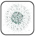 bloomtrigger logo