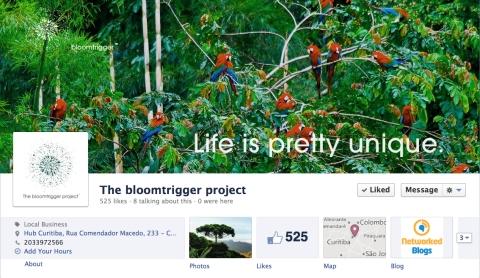 Bloomtrigger facebook profile image