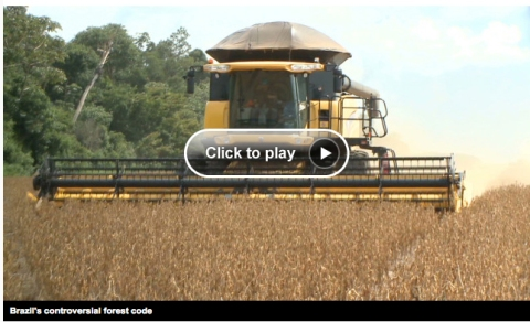 CNN video report on Brazilian farming & forestry