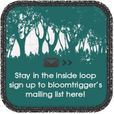 Bloomtrigger newsletter signup button