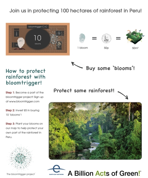 How to protect rainforest with the bloomtrigger project