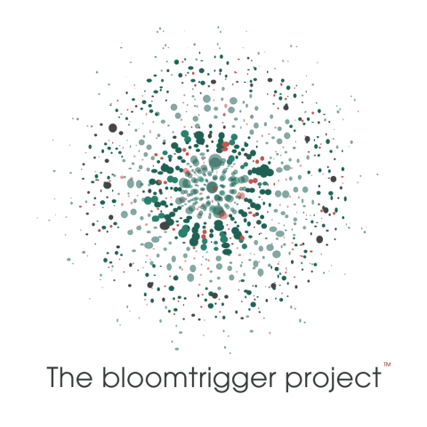 bloomtrigger logo