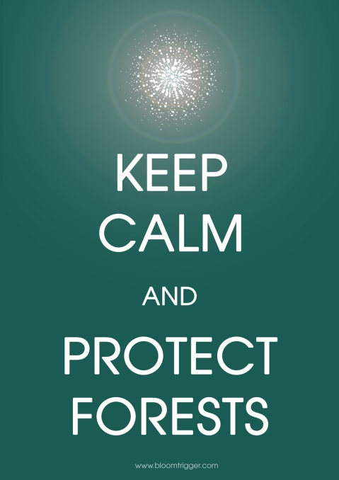 Keep calm and protect forests with bloomtrigger