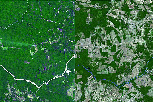 Aerial images of the Mato Grosso state in southwest Brazil
