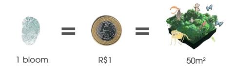 Brazil bloom=R$1=50m2